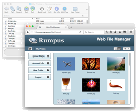 Rumpus: The Premier FTP and Web File Transfer Server